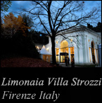 Professional photo exhibition of Hisashi Itoh in Italy limonaia Villa Strozzi 2013